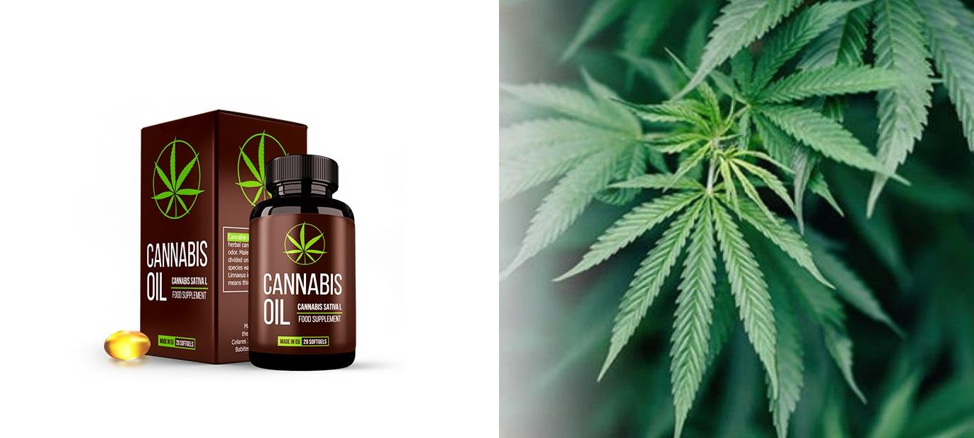 Où Cannabis oil? Quel est le prix dans la pharmacie, sur le site Web?